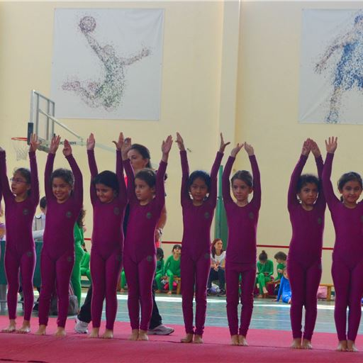 Girls Gymnastics Competition